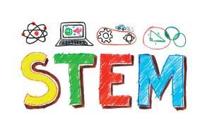 STEM Fee